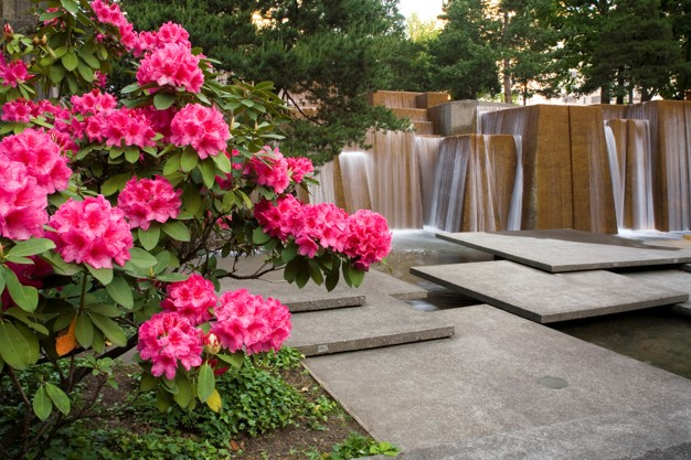 flowers-garden-with-waterfall-background_19485-27787